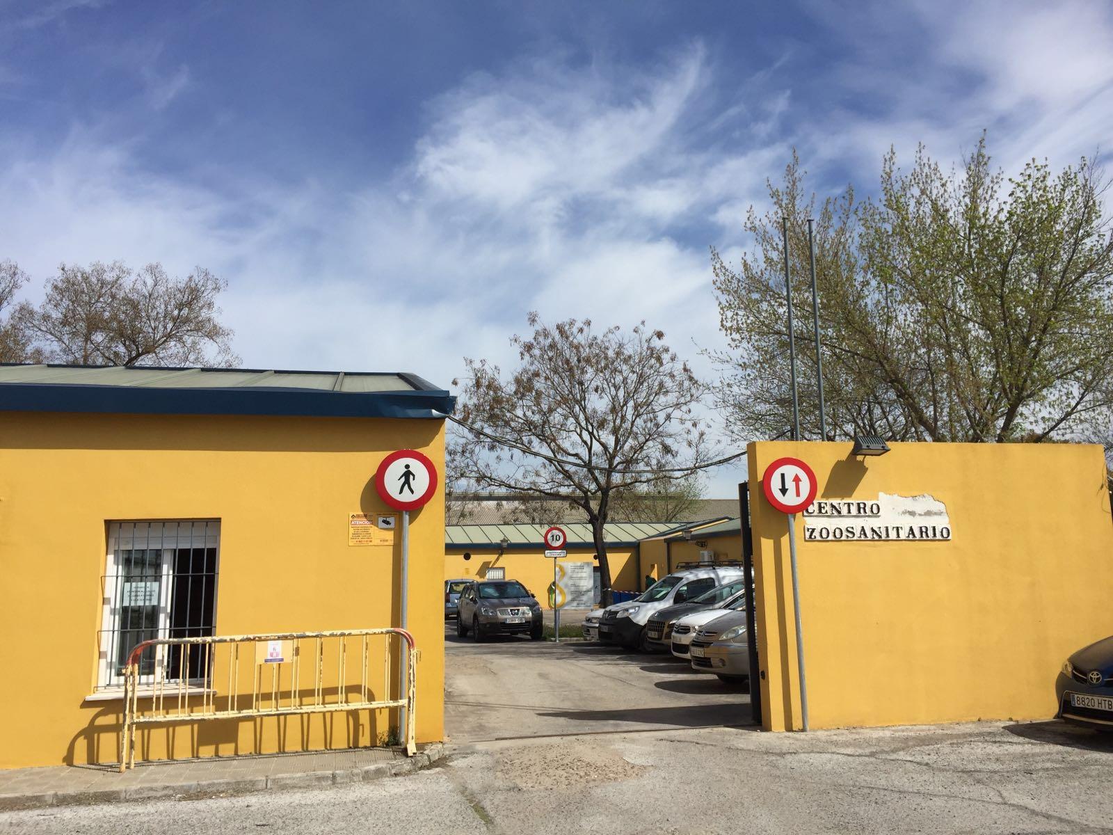rehabilitación del zoosanitario, díaz cubero, DIAZ CUBERO, sevilla, zoosanitario de sevilla